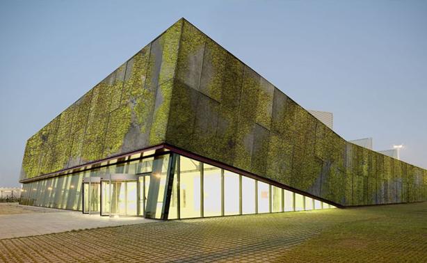 Dit biologische beton is een bijzondere uitvinding van de technische universiteit in Barcelona. Het bevat een laag waarin mossen en grassen kunnen groeien.